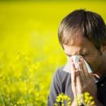 120329_allergia_tusszentes_pollen