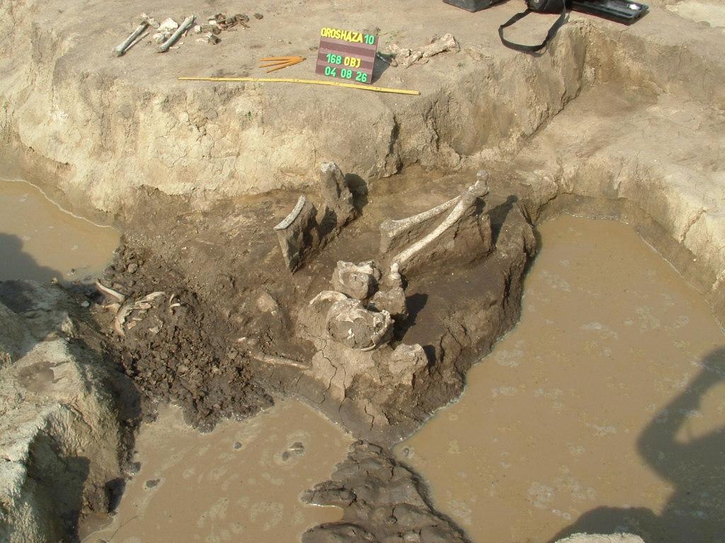 A múltról mesél a leletegyüttes (Fotó: múzeum)