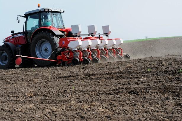 A talajelőkészítés után kezdik vetni a repcét (Fotó: Kecskeméti Krisztina)