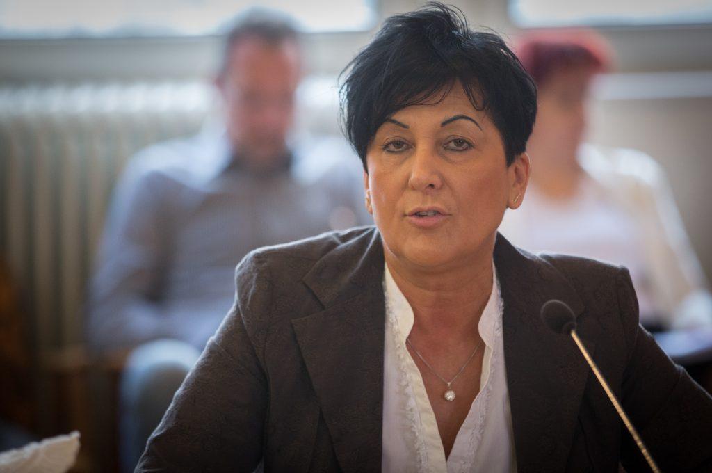 A Pedagógus Szakszervezet nevében szólalt fel Verba Attiláné, megnyitva a közmeghallgatást (klikk a képre) Fotó: Rosta Tibor