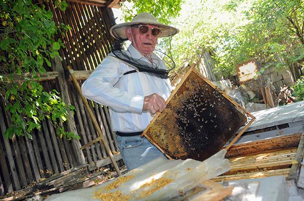 A méhészkedést nem lehet abba hagyni (Fotó: Kecskeméti Krisztina)