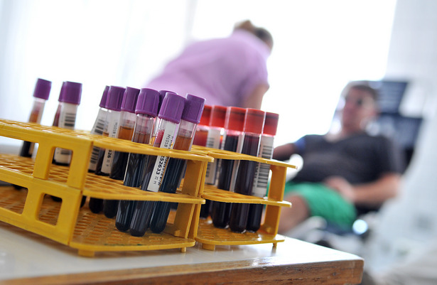 Vírusveszély miatt nem adhat várt bárki (Fotó: Rajki Judit)